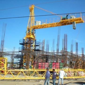 1 Year Warranty Tower Crane With Mast Section For Sale